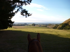 Lots of great views on the back of a horse.